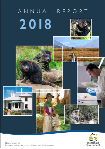 DPIPWE Annual Report 2018 proofread by Hit Send editors